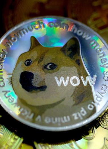 Пирамида без обмана: как поклонники мема про сиба-ину создали народную криптовалюту Dogecoin и в чем опасность ее роста
