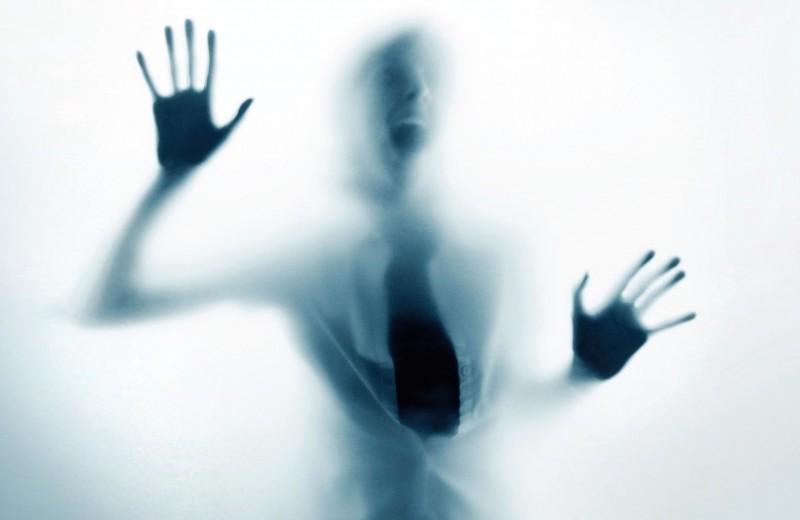 Проверка на стресс: наука о страхе