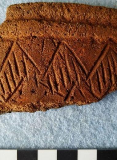 Российские археологи раскопали под Муромом мезолитические стоянки