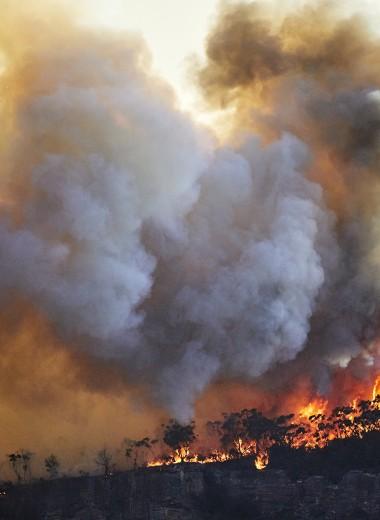 Дым отечества: как пожары сделали Россию и Австралию сестрами по несчастью