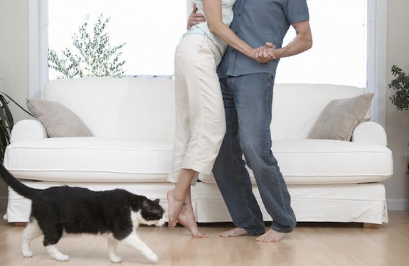 Аня, два ее мужа и один котенок