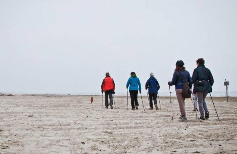 Эффективна ли скандинавская ходьба?