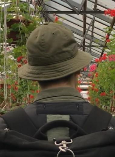 Флора и фауна: 4 занятия, которые помогут наладить контакт с природой