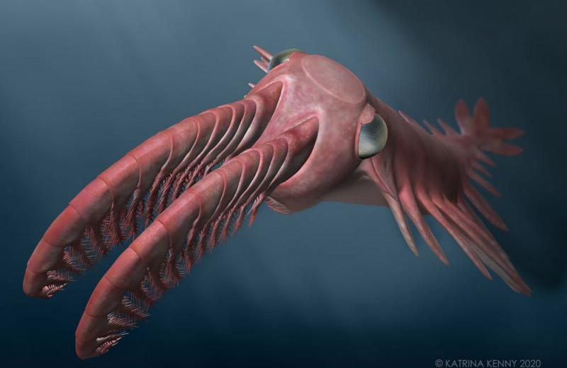 Палеонтологи изучили невероятные глаза вымершего морского монстра