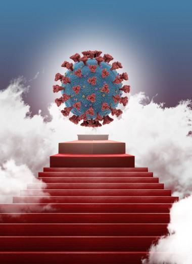 4 мифа о коронавирусе, про которые нужно забыть немедленно