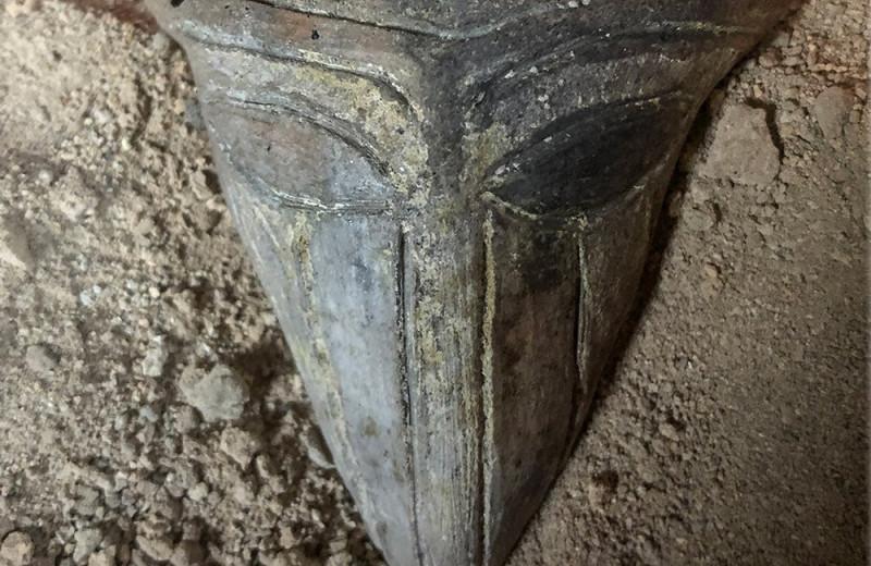 В доисторической соляной столице нашли загадочную антропоморфную «маску»