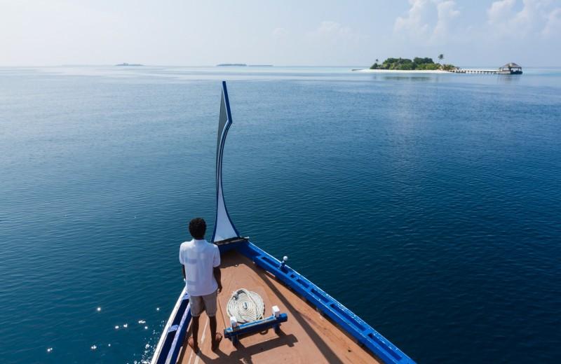 Чем заняться на Мальдивах: 4 идеи от курорта Maafushivaru