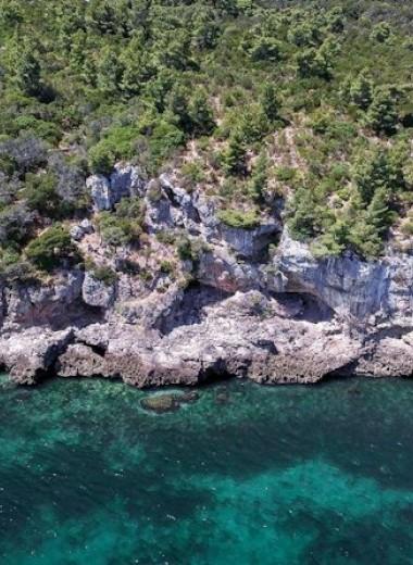 Неандертальцы Пиренейского полуострова оказались любителями морепродуктов