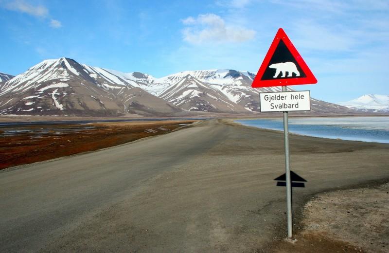 На Шпицбергене зафиксирована рекордная температура в истории наблюдений