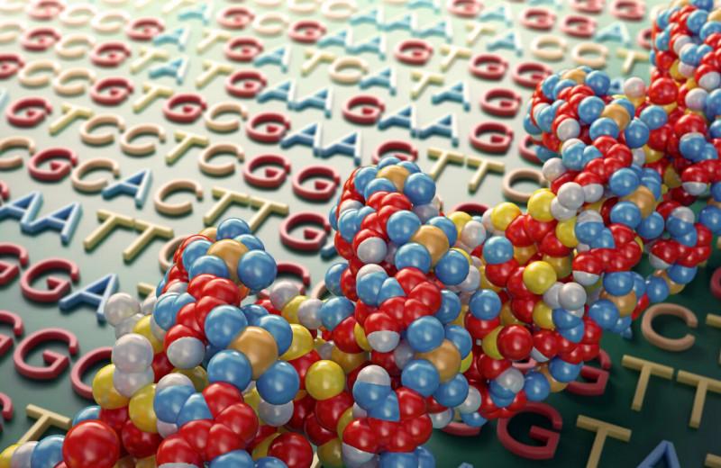 Создан новый революционный механизм редактирования генома без необходимости разрезать ДНК