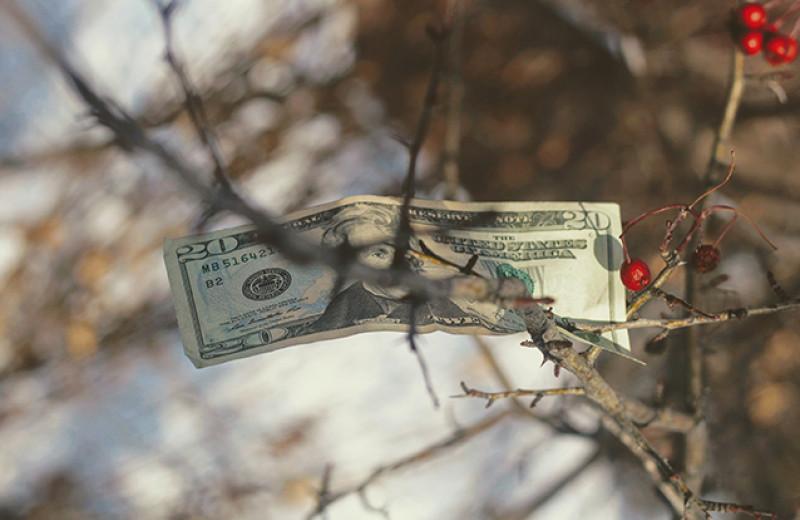 Как люди теряют деньги на инвестициях в недвижимость