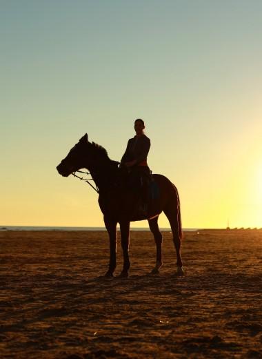 8 легенд Дикого Запада: от Бедовой Джейн до Буффало Билла