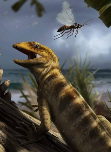 Общий предок ящериц и змей оказался старше на 75 миллионов лет!