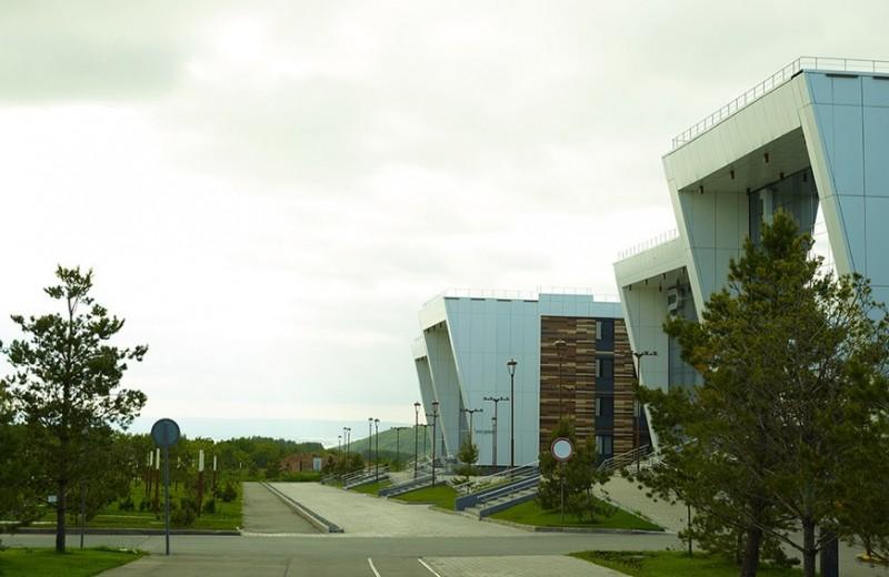 Школа будущих «единорогов»: как работает университет первого в России IT-города