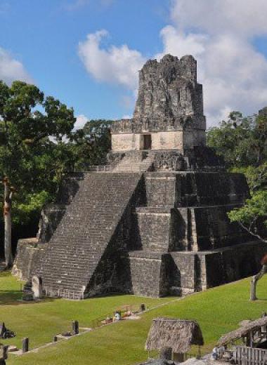Древние майя любили озеленять города