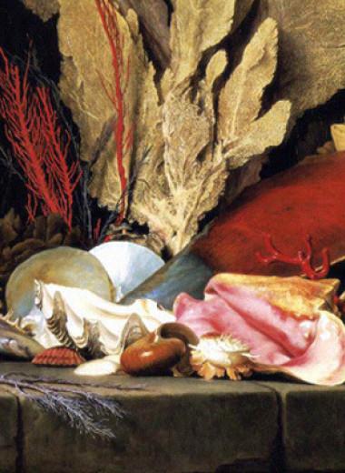 Византийские купцы уже в IV веке наладили доставку консервированных моллюсков