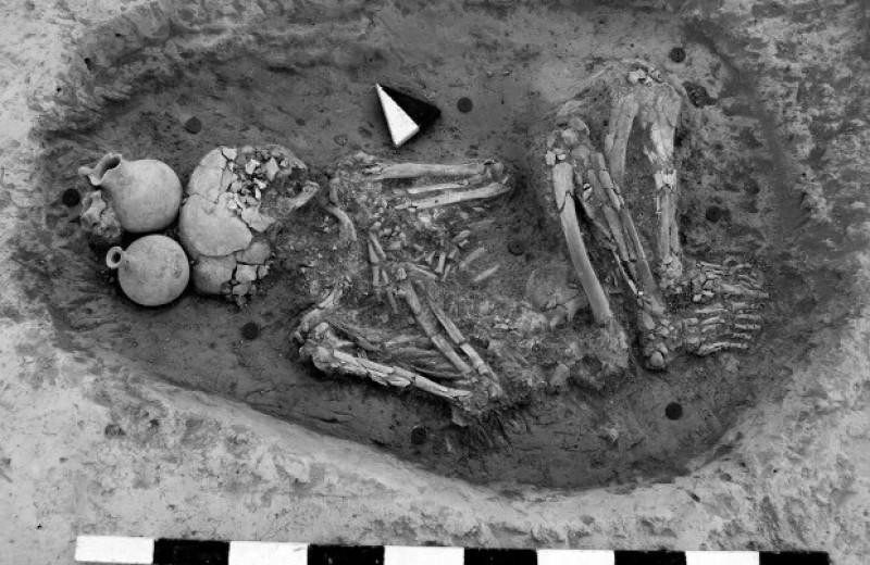 Палеогенетики не нашли свидетельств миграции в древний ближневосточный центр Алалах