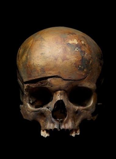 Погибшие вместе: жертвы ярославской бойни 1238 года оказались родственниками