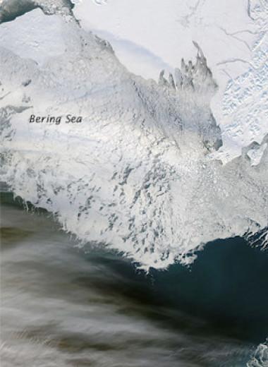 Берингово море потеряло рекордное количество зимнего льда за последние 5,5 тысячи лет