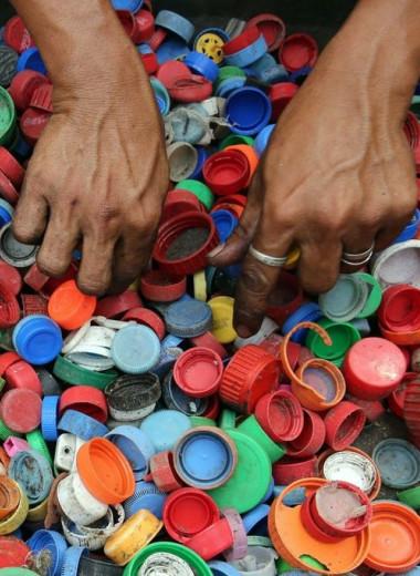 Могут ли микробы, поедающие пластик, решить проблему утилизации