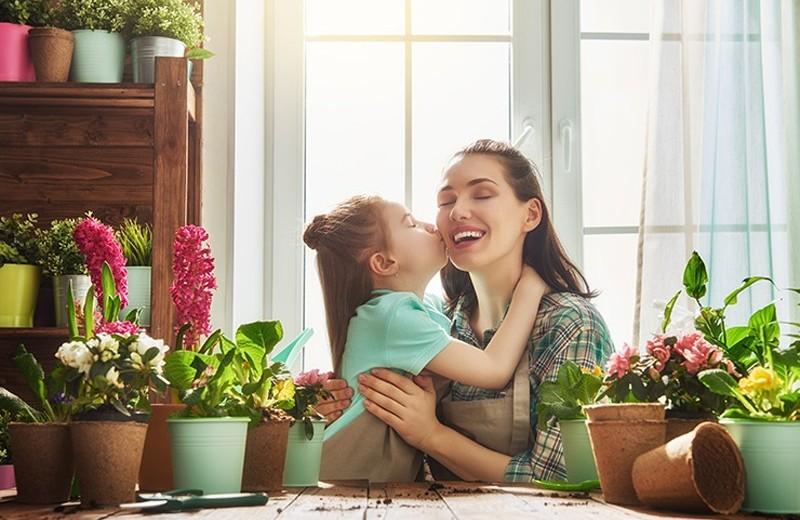 Как выбрать горшок для цветов: лайфхаки для создания оазиса в доме