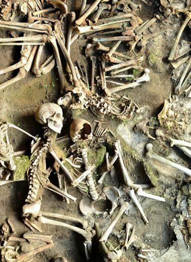 Мужская и женская диета: чем питались жители Геркуланума, уничтоженного Везувием