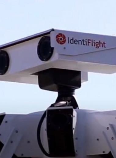Умная камера останавливает турбину ветрогенератора при приближении краснокнижных птиц