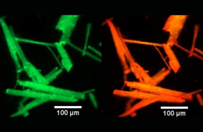 Бумажный флуоресцентный сенсор определил рекордно низкую концентрацию углекислого газа