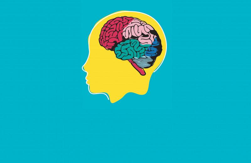 Чем отличается мозг творческого человека