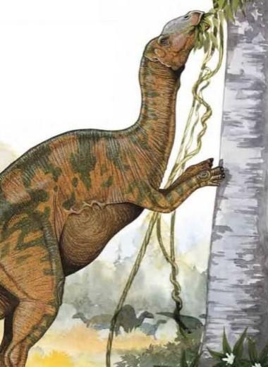У гадрозавра из Канады обнаружили редкую форму рака