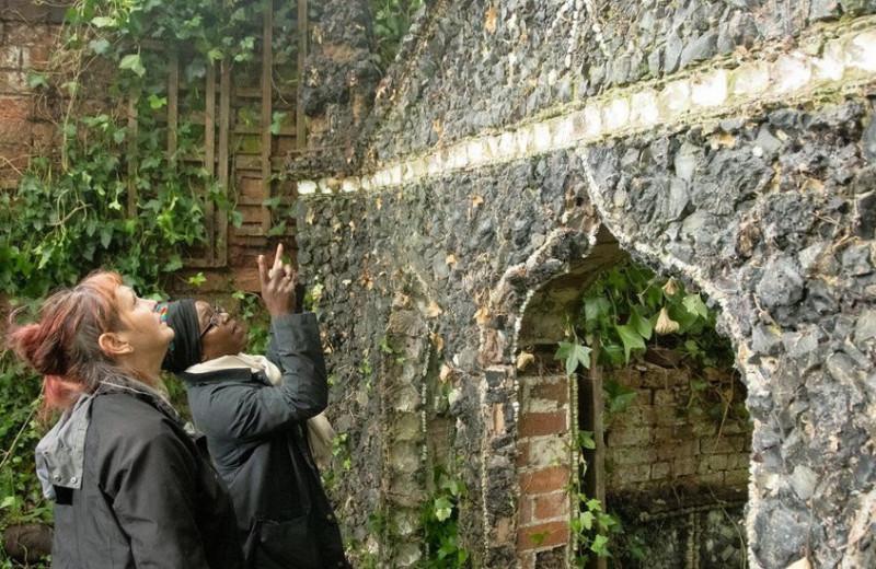 Британец нашел в саду архитектурный каприз из зубов овец, костей и ракушек