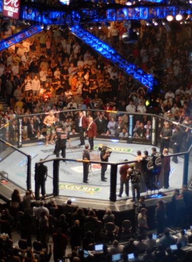 10 убойных фактов про MMA