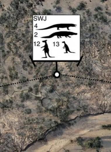 Первые австралийцы жили среди громадных ящеров и кенгуру-великанов