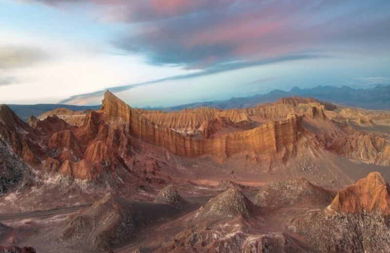 Как птичий помет превратил самую страшную пустыню в оазис