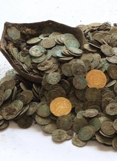 Кабаны-кладоискатели раскопали сокровище в Словакии