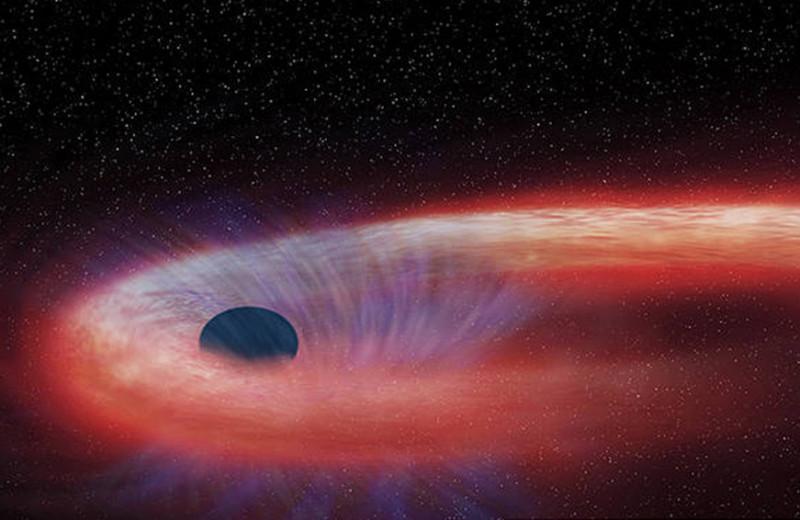 Гибель солнц: астрономы увидели уничтожение звезд черными дырами