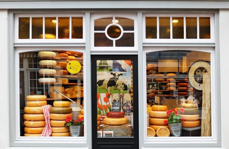 Сыроварение в домашних условиях: как разбогатеть на производстве сыра