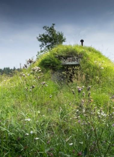 Житель деревни переселился из дома в землянку, чтобы накопить на старость
