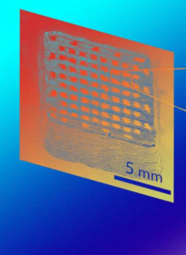 Биоразлагаемый суперконденсатор напечатали на 3D-принтере