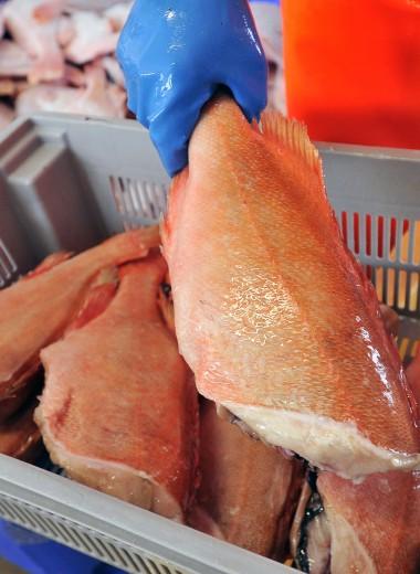 «Рыбный король» Виталий Орлов сообщил о прекращении дела о мошенничестве в «Норебо»