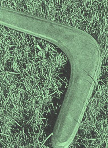 На австралийских бумерангах нашли следы обработки камня
