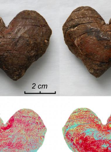 Археологи исследовали загадочные артефакты из бивня мамонта