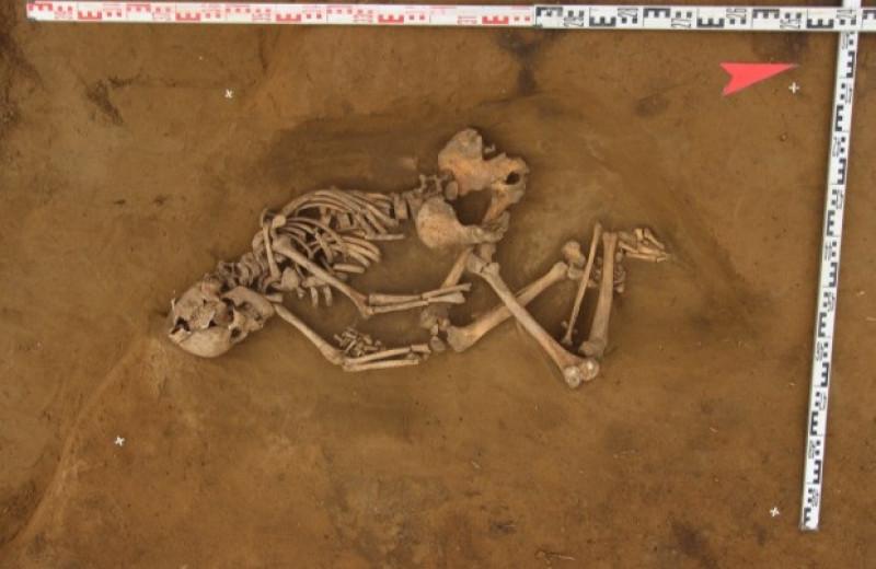 Северные олени оказались главной добычей древних охотников Афонтовой горы