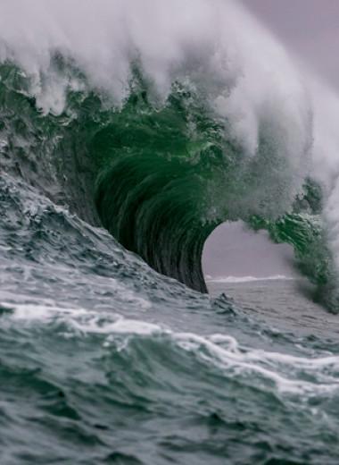 Сонали Дераньягала: Волна.О немыслимой потере и исцеляющей силе памяти