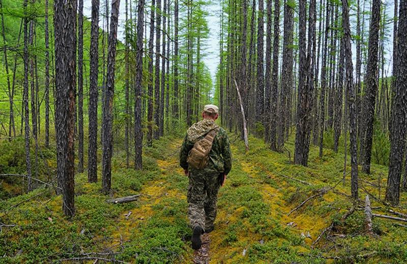 По прозвищу Леший: как погиб мужчина, сбежавший в лес, чтобы не платить алименты