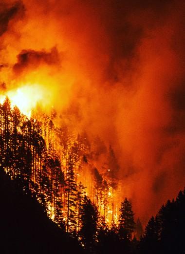 Устроивший лесной пожар подросток должен заплатить 36 миллионов долларов