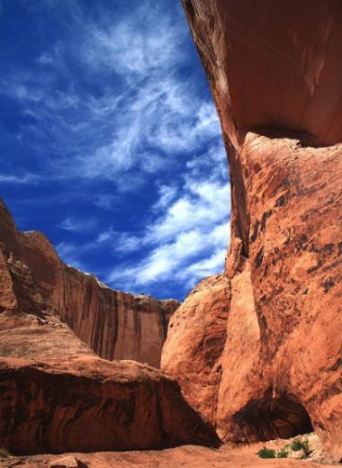 Как образуется пустынный загар горных пород