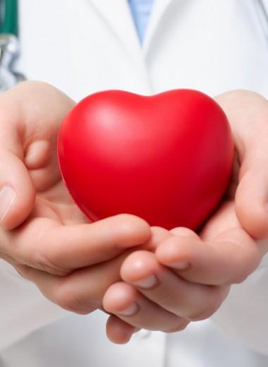 Как стать донором крови: подробная инструкция