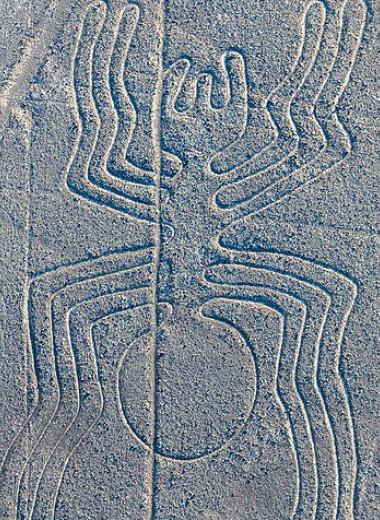 Для чего начертаны загадочные геоглифы Наски: новая версия