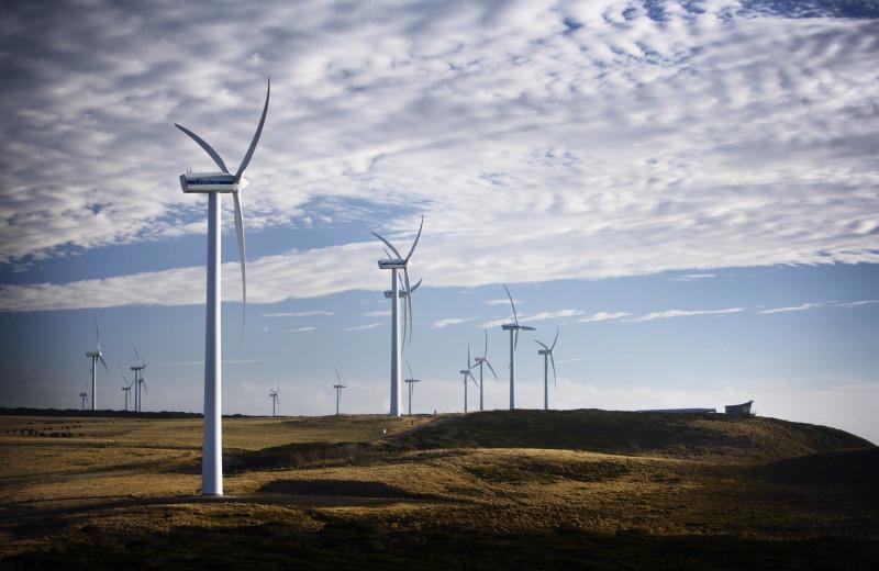 Тасмания полностью перешла на возобновляемую электроэнергию